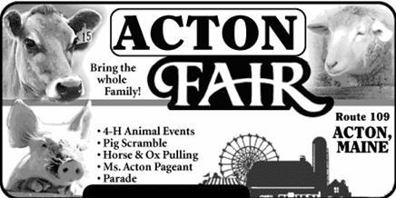 Acton Fair Openings 2018