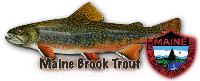 Pot Luck – Commissioner Woodcock – and a trout
