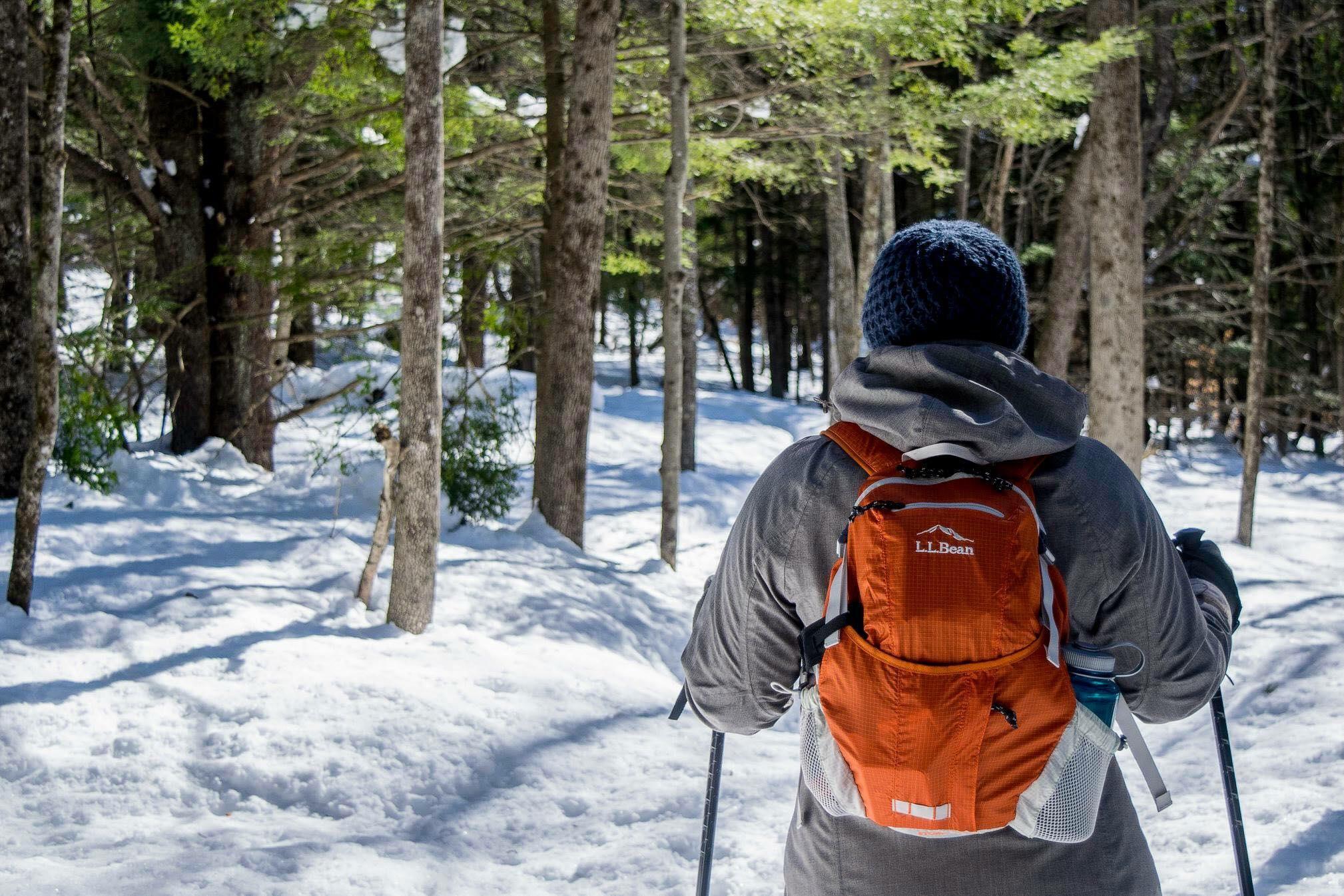 Snowshoeing Beyond Round Pond